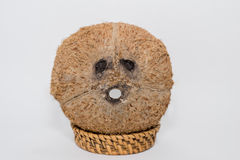 Coconut with funny faces on white background Stock Photos