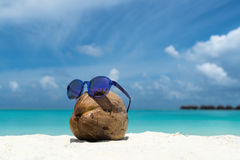 Coconut funny wearing sunglasses on the beach Stock Image