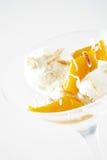 Coconut gelato Stock Image