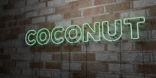 COCONUT - Glowing Neon Sign on stonework wall - 3D rendered royalty free stock illustration Royalty Free Stock Photography