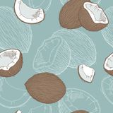 Coconut graphic color seamless pattern sketch illustration. Vector Royalty Free Stock Photos