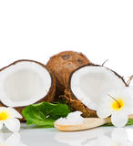Coconut with green leaf Stock Photography
