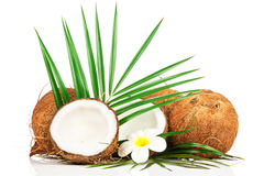 Coconut with green leaf Royalty Free Stock Photography