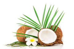 Coconut with green leaf Stock Photo