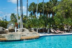 Coconut green palm trees under the sun, pool with blue water, tropical beautiful background. Summer, tourism, holidays. Luxury resort, vacation concept stock photos
