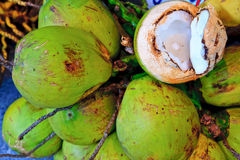 Coconut in group. With one opened Royalty Free Stock Photo
