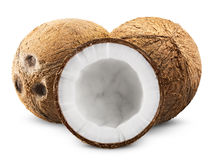 Coconut Stock Images