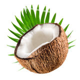 Coconut half with leaf on white Royalty Free Stock Photography