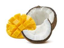 Coconut half mango cut isolated on white background Stock Image