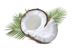 Coconut half piece with leaves isolated on white. Coconut half piece with palm tree leaves isolated on white background Royalty Free Stock Photos