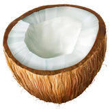 Coconut half Royalty Free Stock Photos