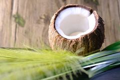 Coconut halves and green leaf on old wood background. Royalty Free Stock Photos