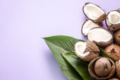 Coconut halves with tropical leaves on a colored background. Fresh coconut halves with tropical leaves on a colored background. Flat royalty free stock photo