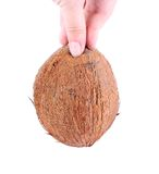 Coconut in hand Royalty Free Stock Photo