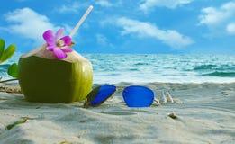 A coconut happy day stock photos