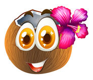 Coconut with happy face Stock Images