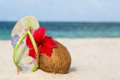Coconut, hibiscus flower and flip flops Royalty Free Stock Photo