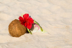 Coconut, hibiscus flower and flip flops Stock Image