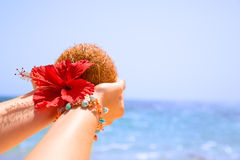 Coconut Hibiscus flower in hand Stock Images