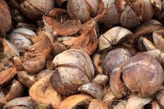 Coconut husk Royalty Free Stock Photos