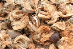 Coconut husks Royalty Free Stock Photo
