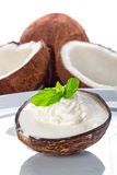 Coconut ice cream. In coco shell Royalty Free Stock Photo