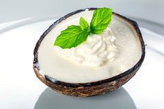 Coconut ice cream. In coco shell Royalty Free Stock Images