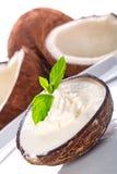 Coconut ice cream Stock Photo