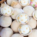Coconut ice cream Royalty Free Stock Image