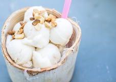 Coconut Ice Cream Stock Image