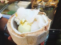 Coconut ice cream. On Coconut shell Stock Photography