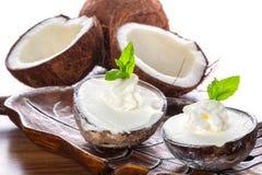 Coconut ice creams. In coco shells Royalty Free Stock Photos