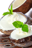 Coconut ice creams stock images