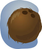Coconut illustration Stock Photos