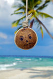 Coconut with Island fever! Royalty Free Stock Photography