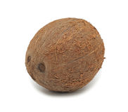 Coconut, isolated Stock Images