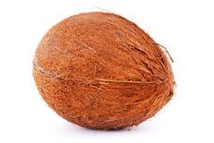 Coconut isolated Royalty Free Stock Photos