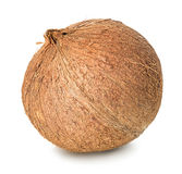 Coconut isolated on white Royalty Free Stock Photo