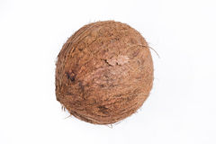 Coconut. Isolated on white background Royalty Free Stock Photography