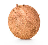 Coconut isolated on white Stock Photos