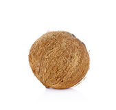 Coconut isolated on white background.  Royalty Free Stock Photo