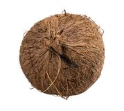 Coconut isolated on white background Royalty Free Stock Images