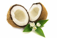 Coconut with jasmine Royalty Free Stock Photo