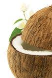 Coconut with jasmine Stock Image