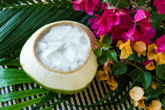 Coconut Jelly asian dessert Stock Image