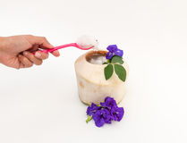 Coconut jelly and Pink Spoon. Coconut Jelly Pink Spoon and Purple flower Stock Photos