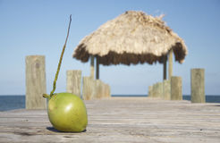 Coconut on a jetty Royalty Free Stock Photography