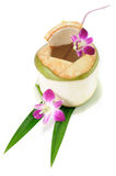 Coconut juice Stock Images