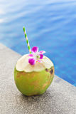 Coconut juice with orchid flower on swimming pool Stock Images
