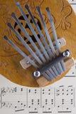 Coconut Kalimba Thumb Piano Royalty Free Stock Images